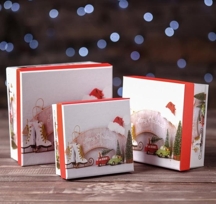 Набор печенья с предсказаниями в шоколаде Новый год Рождество